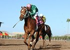 Turf Paradise Cancels Third Straight Day