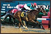 Asmussen Pair Head Wide-Open Arkansas Derby