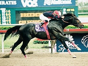 Champion Sprinter Artax Dies
