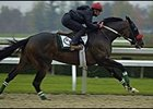 Lava Man, Other O'Neill Horses, Work at Keeneland