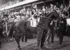 Derby Wins of Triple Crown Victors: War Admiral