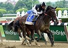 Travers Nominee Japan Fractures Sesamoid