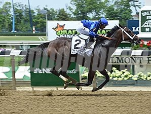 Wedding Toast wins the 2015 Odgen Phipps.