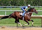 Normandy Invasion to New York for Spendthrift