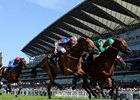 Mementoes for Breeders of Royal Ascot Winners
