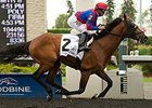 Eclipse Stakes Runners Clash in Nijinsky