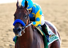 The American Pharoah Story