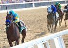 Zito on 'Pharoah': 'A Great Horse Came Along'