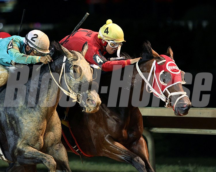 Euro Indian Girl wins the Old Glory Handicap June 12.