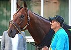 No Fast Track to Hall for American Pharoah