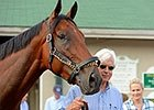 Bob Baffert on American Pharoah: Part Two