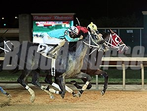 Euro Indian Girl wins the 2015 Old Glory Handicap.