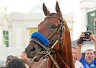 American Pharoah's Crown Top Sports Story