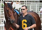 Divisidero Favored in Appleton