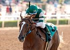 Stellar Wind Tops Torrey Pines Field