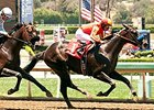 Gimme Da Lute Gets the Cash in Affirmed