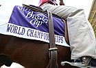 Complete Breeders' Cup Pre-Entries
