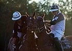 Vic Zast's Saratoga Diary: Photo Finishes