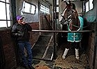 KY Derby Buzz: Weather, California Chrome