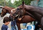 Travers: The Ultimate Head-Scratcher