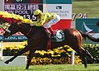 Slideshow: Hong Kong Cup 2011