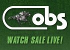Live Video: OBS June Sale