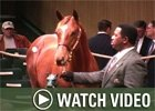 Video:  Keeneland Nov - Day 1 Wrap