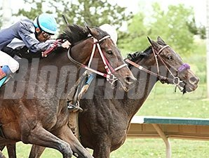 Lady Contender wins the Front Range Stakes.
