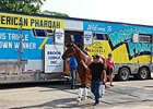 American Pharoah Arrives at Monmouth