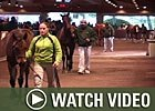 Video: Keeneland Nov - Day 3 Wrap