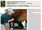 Health Zone: Lameness - Stifle Injuries
