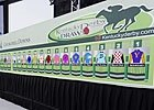 Slideshow: Meet the 2011 Ky Derby Field