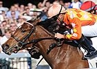 Heartwarming Stories Surround Oaks