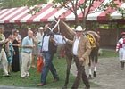 Saratoga Diary: Downwards-wise