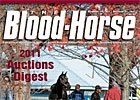 2011 Auctions Digest
