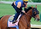 Slideshow: Kentucky Oaks Field