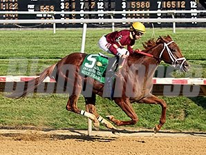 Sheer Drama rolls to victory in the Delaware Handicap.
