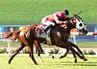 Dirt Returns, Wagering Up for Del Mar Opener