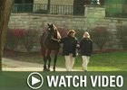 Video: Keeneland Nov - Day 12 Wrap