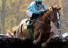 Steeplechase Spring Season Begins March 20