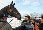 Slideshow: Zenyatta at the Farm