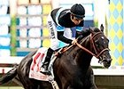 Champion Shared Belief Lands Classic Spot