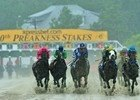 Slideshow: 2015 Preakness Stakes