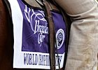 Slideshow: 2010 Breeders' Cup Sights
