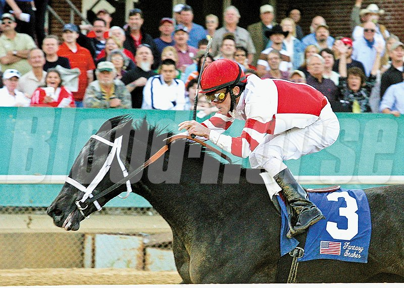 Eight Belles takes the 2008 Fantasy Stakes  (gr. 2) at Oaklawn Park.