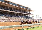 Del Mar Sets Summer Stakes Schedule