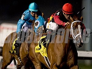 Calgary Cat wins the 2015 Ontario Jockey Club Stakes.
