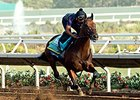 Monmouth Working on $1M Race for 'Pharoah'