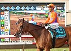 Pedigree Analysis: Beholder