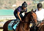 'Pharoah' Showing Good Energy Day After Work